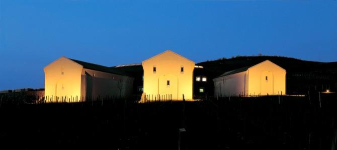 Disznókő Winery - Mezőzombor