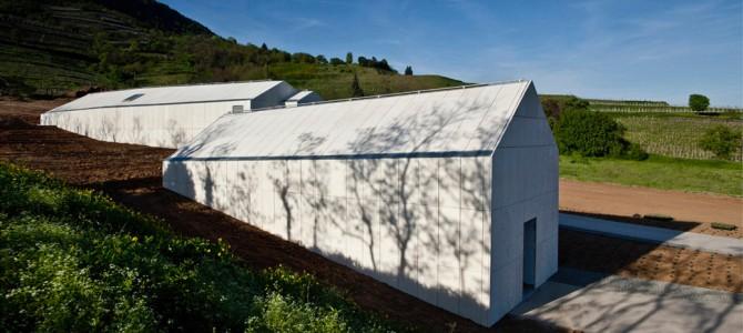 Laposa Winery - Badacsonytomaj